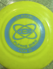 Catch the Flying Disc!