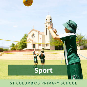 Years 3 to 6 - Girls and Boys' Sports Uniform