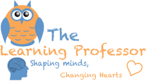 The Learning Professor - Coming September 25th!