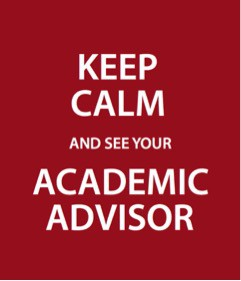 Academic Advising Meetings