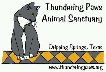 Tiger 2nd Graders Raise Almost $900 for Thundering Paws!