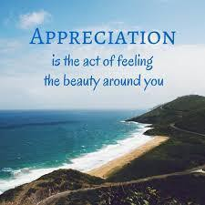 Positivity Project ~ APPRECIATION OF BEAUTY & EXCELLENCE