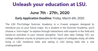 Apply to LSU Pre-College Summer Academy ... Click the Image for Details