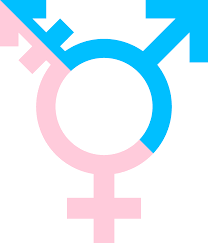 Transgender update from the District