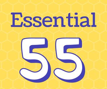 Implement Ron Clark's Essential 55