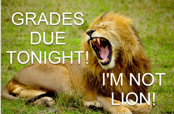 Grades Due Tonight! 11:59 PM