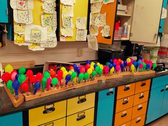 6th Grade Scientists Analyze Data