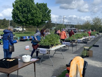 Plant Sale Success!