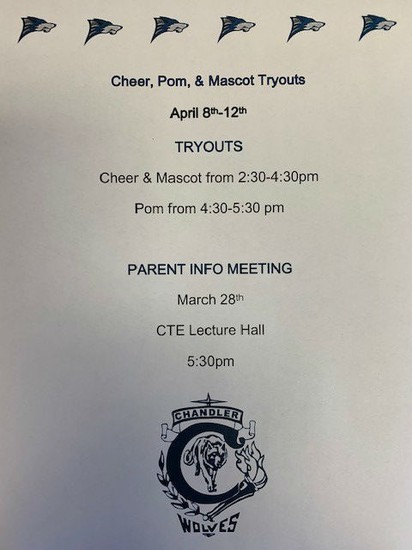 Cheer, Pom, and Mascot Tryout Flyer