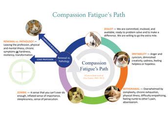 Compassion and Resilience Toolkit Challenge #2