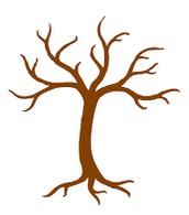 """Communi-Tree"" Project"