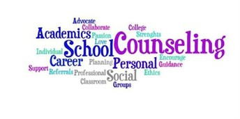 RHHS COUNSELOR CASELOAD: