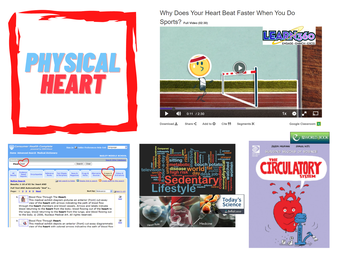 The Physical Heart