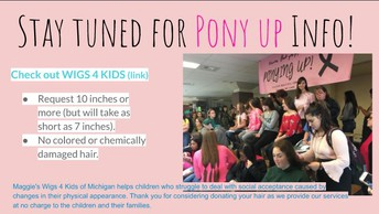 More Pony Up Info