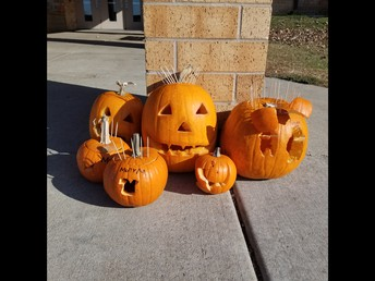 5th grade carved pumpkins
