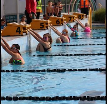 Year 3-6 Swimming Sports Monday 22 March