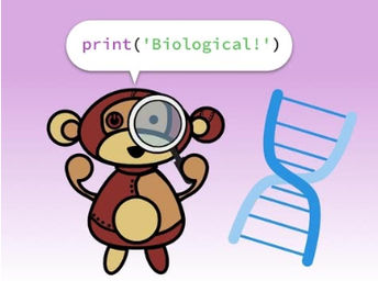 Python + Biology: Build an animal classifier!