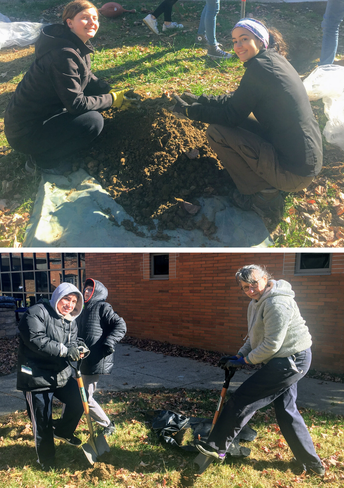CHS Environmental Club Partners with Pennsylvania Horticultural Society to Plant Trees on Campus