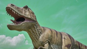 Free Resource: All About Dinosaurs