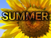 Summer Learning Opportunities at BASD