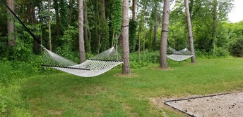 Hammock's are up