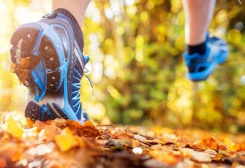 Healthy Eating & Exercise for FALL!