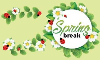 Spring Break / Vacaciones de primavera