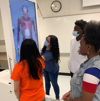 Healthcare students learning with the new 3D computer table.