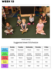 Mindful Classrooms--Week 13