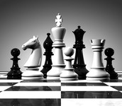*NEW* CHESS CHAMPS
