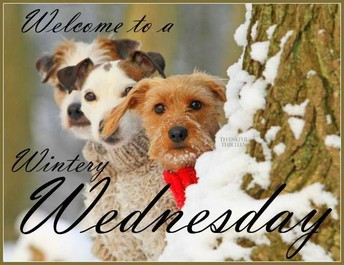 Wednesday, January 9