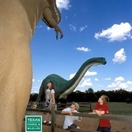 Dinosaur Track Talk