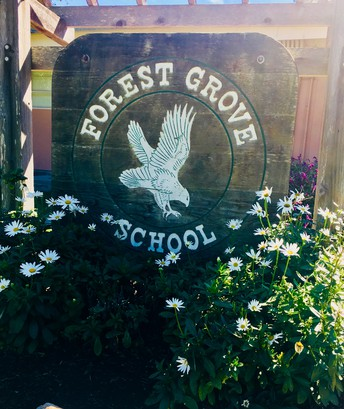 Forest Grove Elementary School