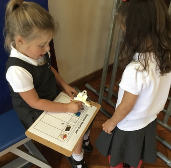 Hunting for Materials in Year 1