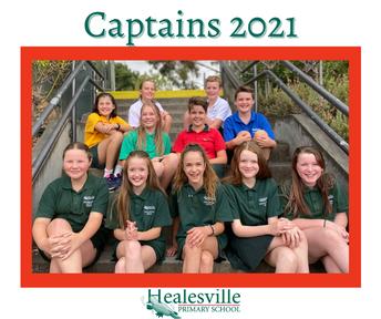 Meet our Captains