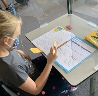 Annotations in Literature-  3rd Grade