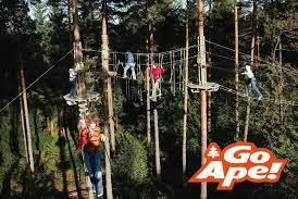 Go Ape! Treetop Adventures- Bear, DE