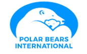 Follow the Polar Bears in Churchill, Manitoba