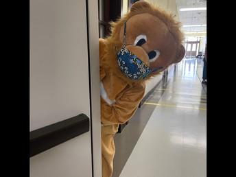 Our Marysville Lion Says Hello