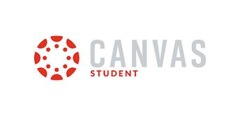 Canvas information