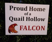 NEW Proud Falcon Yard Signs