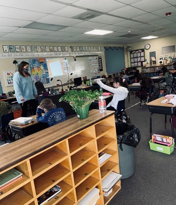 Opportunity to check on students while learning in class is valuable