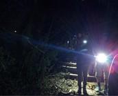 WMS Night Hike @ LeRoy Oaks Forest Preserve