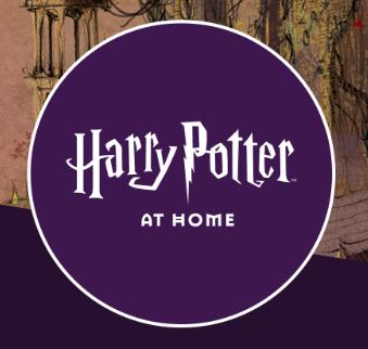Do You Like Harry Potter?