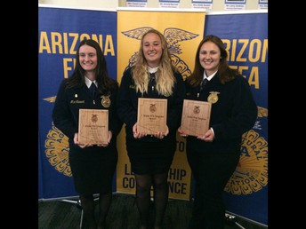 State FFA Degree recipients from left to right, Maci Stewart, Carrigan Partridge and Karlie Kronewitter. Not pictured, Abby Deam and Greg Guzman.