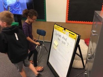 Mrs. Shaner's 3rd graders jumping into inquiry