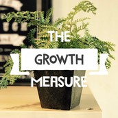 How to Measure Growth