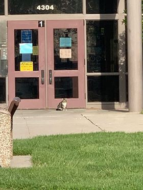 New Student Waiting to Enroll This Morning...