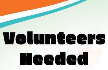 Summer Volunteers