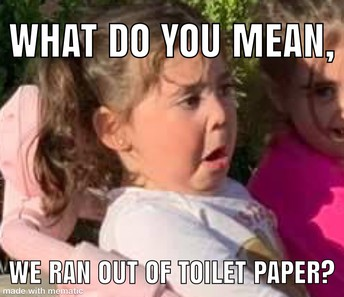 The Toilet Paper Crisis of 2020